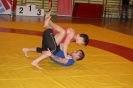 2013 Cto. Madrid Grappling